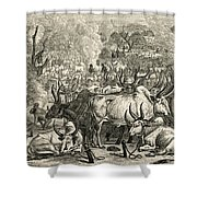 A Dinka Cattle Park, Southern Sudan Shower Curtain by Ken Welsh