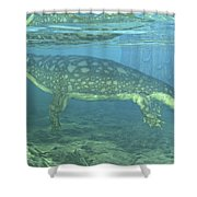 A Late Devonian Period Ichthyostega Shower Curtain by Walter Myers