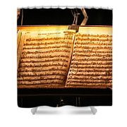 A Little Night Music Shower Curtain by Lauri Novak