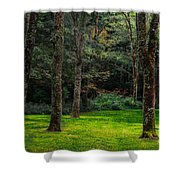 A Place To Unwind Shower Curtain by Scott Hervieux