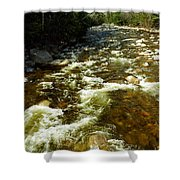 A Rush Shower Curtain by Skip Willits