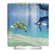 A Sailfish Hunts Prey On A Sandy Reef Shower Curtain by Corey Ford