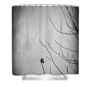 A Sign Of Things To Come Shower Curtain by Laurie Search