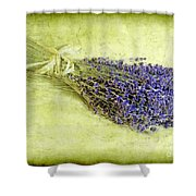A Spray of Lavender Shower Curtain by Judi Bagwell