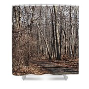 A Walk In The Woods Shower Curtain by Robert Margetts