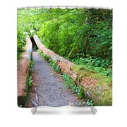 A Well Marked Path Shower Curtain by Heidi Smith
