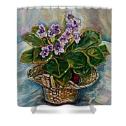 African Violets Shower Curtain by Carole Spandau