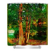 Afternoon Delight Shower Curtain by Judi Bagwell