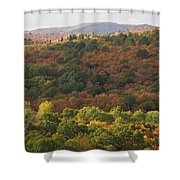 Algonquin in Autumn Shower Curtain by Cale Best