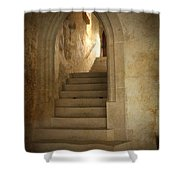 All Experience Is An Arch Shower Curtain by Heiko Koehrer-Wagner