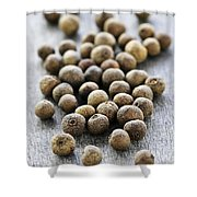 Allspice Berries Shower Curtain by Elena Elisseeva