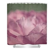 Antique Pink Shower Curtain by Aimelle
