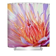 Aquatic Bloom Shower Curtain by Julie Palencia