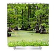 Arkansas Lake With Cypresses Shower Curtain by Carol Groenen