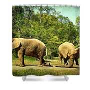 At Cross Purposes Shower Curtain by Lianne Schneider