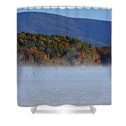 Autumn Backdrop Shower Curtain by Douglas Barnard