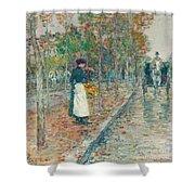 Autumn Boulevard In Paris Shower Curtain by Childe Hassam
