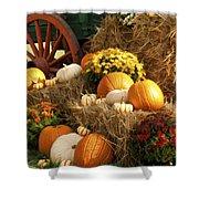 Autumn Bounty Shower Curtain by Kathy Clark