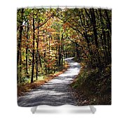 Autumn Country Lane Shower Curtain by David Dehner