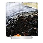 Autumn Leaf On River Rock Shower Curtain by Elena Elisseeva