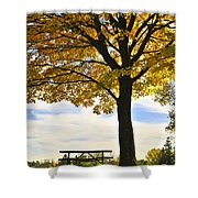 Autumn Park Shower Curtain by Elena Elisseeva