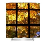 Autumn Window 2 Shower Curtain by Joann Vitali