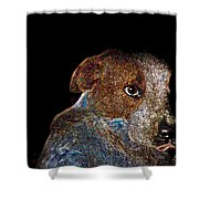 Baby Blue Shower Curtain by One Rude Dawg Orcutt