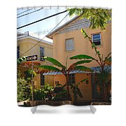 Banana Tree Lane in Key West Shower Curtain by Susanne Van Hulst