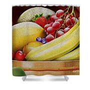 Basket Of Fruit Shower Curtain by Cheryl Young