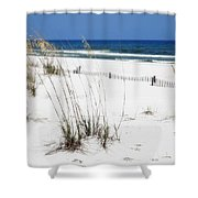 Beach No. 5 Shower Curtain by Toni Hopper