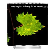 Beauty And Confucius Shower Curtain by David Lee Thompson