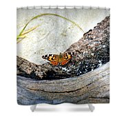 Beauty On the Beach Shower Curtain by KAREN WILES