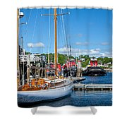 Belfast Harbor Shower Curtain by Susan Cole Kelly