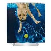 Belly Flop Shower Curtain by Jill Reger