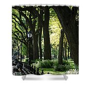 Benches Trees And Lamps Shower Curtain by Rob Hans