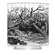 Bewick: Man Drowning Shower Curtain by Granger