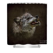 Big Bad Wolf Shower Curtain by Louise Heusinkveld