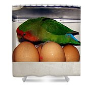 Big Ideas Shower Curtain by Terri  Waters