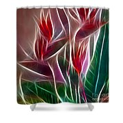 Bird Of Paradise Fractal Panel 2 Shower Curtain by Peter Piatt