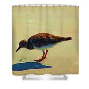 Bird On Daytona Beach Shower Curtain by David Lane