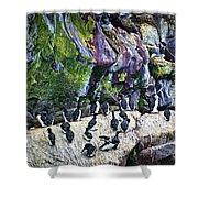 Birds At Cape St. Mary's Bird Sanctuary In Newfoundland Shower Curtain by Elena Elisseeva