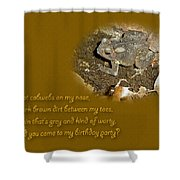 Birthday Party Invitation - Common Toad - Child Shower Curtain by Mother Nature