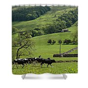 Bishopdale In The Yorkshire Dales National Park Shower Curtain by Louise Heusinkveld