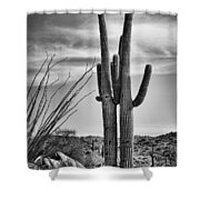 Black And White Couple Shower Curtain by Kelley King