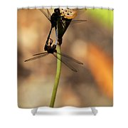 Black Dragonfly Love Shower Curtain by Sabrina L Ryan