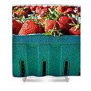 Blue Box Shower Curtain by Susan Herber