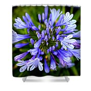 Blue On Blue Shower Curtain by Karen Wiles