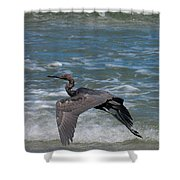 Blue On The Beach Shower Curtain by David Lane
