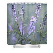 blue vervain Shower Curtain by Priska Wettstein