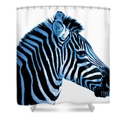 Blue Zebra Art Shower Curtain by Rebecca Margraf